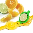 Bru Joy Citrus Press