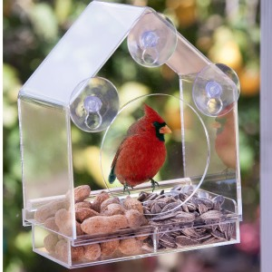 Birds-I-View Bird Feeder